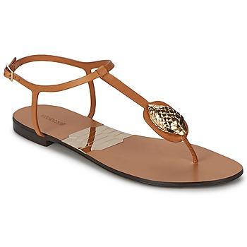 Παπούτσια Γυναίκα Σαγιονάρες Roberto Cavalli XPX243-PZ220 Brown