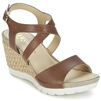 Παπούτσια Γυναίκα Σανδάλια / Πέδιλα Lumberjack SISSI Brown / Beige