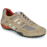 Παπούτσια Άνδρας Χαμηλά Sneakers Geox SNAKE Beige