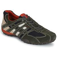 Παπούτσια Άνδρας Χαμηλά Sneakers Geox SNAKE Grey