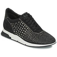 Παπούτσια Γυναίκα Χαμηλά Sneakers Luciano Barachini SOHO Black