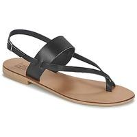 Παπούτσια Γυναίκα Σανδάλια / Πέδιλα Betty London EVACI Black