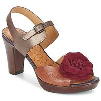 Παπούτσια Γυναίκα Σανδάλια / Πέδιλα Chie Mihara JELIO BORDEAUX