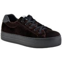 Παπούτσια Γυναίκα Χαμηλά Sneakers F. Milano  Brown