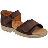 Παπούτσια Παιδί Σανδάλια / Πέδιλα Elefanten  Brown