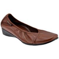Παπούτσια Γυναίκα Μπαλαρίνες Mephisto  Brown