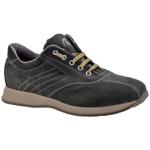 Παπούτσια Άνδρας Ψηλά Sneakers Docksteps  Grey