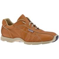 Παπούτσια Άνδρας Ψηλά Sneakers Docksteps  Beige