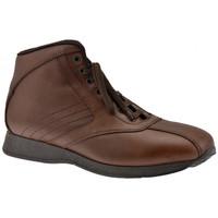 Παπούτσια Άνδρας Ψηλά Sneakers Docksteps  Brown