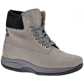 Παπούτσια Άνδρας Πεζοπορίας Bob Molla  Grey
