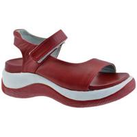 Παπούτσια Παιδί Σανδάλια / Πέδιλα Fornarina  Red