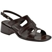 Παπούτσια Γυναίκα Σανδάλια / Πέδιλα Now  Brown