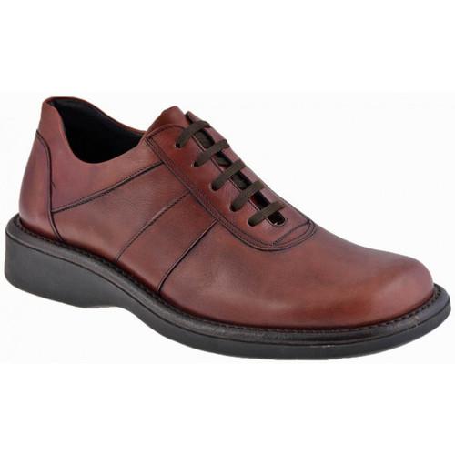 Παπούτσια Άνδρας Μπότες Nicola Barbato  Violet