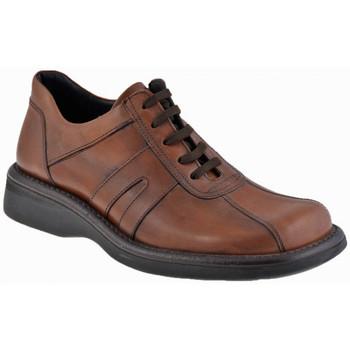 Παπούτσια Άνδρας Μπότες Nicola Barbato  Beige
