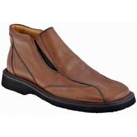 Παπούτσια Άνδρας Μοκασσίνια Nicola Barbato  Brown