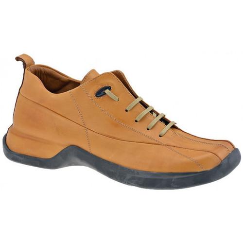 Παπούτσια Άνδρας Ψηλά Sneakers Pawelk's  Brown