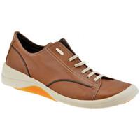 Παπούτσια Άνδρας Χαμηλά Sneakers Pawelk's  Brown