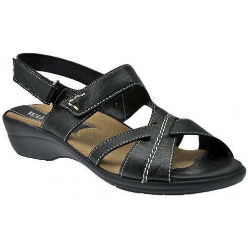 Παπούτσια Γυναίκα Σανδάλια / Πέδιλα Susimoda  Black