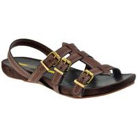 Παπούτσια Γυναίκα Σανδάλια / Πέδιλα Lea Foscati  Brown