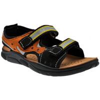 Παπούτσια Αγόρι Σανδάλια / Πέδιλα Inblu  Black