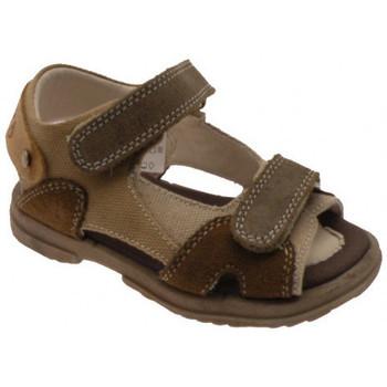 Παπούτσια Αγόρι Σανδάλια / Πέδιλα Inblu  Brown