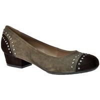 Παπούτσια Γυναίκα Γόβες Otto E Dieci  Brown