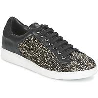 Παπούτσια Γυναίκα Χαμηλά Sneakers Maruti NOVA Black / άσπρο