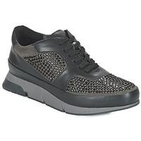 Παπούτσια Γυναίκα Χαμηλά Sneakers Luciano Barachini OXFORD Black / Grey
