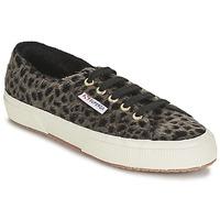 Παπούτσια Γυναίκα Χαμηλά Sneakers Superga 2750 LEOPARDHORSEW Leopard