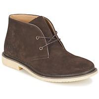 Παπούτσια Άνδρας Μπότες Cool shoe DESERT BOOT Brown