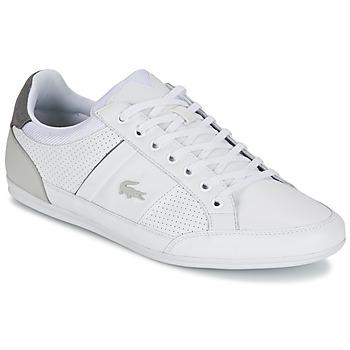 Παπούτσια Άνδρας Χαμηλά Sneakers Lacoste CHAYMON 316 1 Άσπρο / Grey