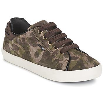 Παπούτσια Κορίτσι Χαμηλά Sneakers Geox KIWI GIRL Green