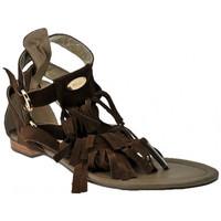 Παπούτσια Γυναίκα Σανδάλια / Πέδιλα Swish  Brown