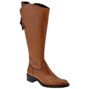 Παπούτσια Γυναίκα Μπότες για την πόλη Dmn  Multicolour