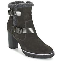 Παπούτσια Γυναίκα Μποτίνια Fericelli FAIKA Grey