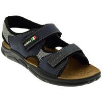 Παπούτσια Άνδρας Σανδάλια / Πέδιλα Inblu