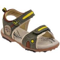 Παπούτσια Παιδί Σανδάλια / Πέδιλα Lumberjack  Green