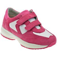 Παπούτσια Παιδί Χαμηλά Sneakers Lumberjack  Ροζ