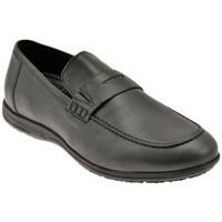 Παπούτσια Άνδρας Μοκασσίνια Lumberjack  Black