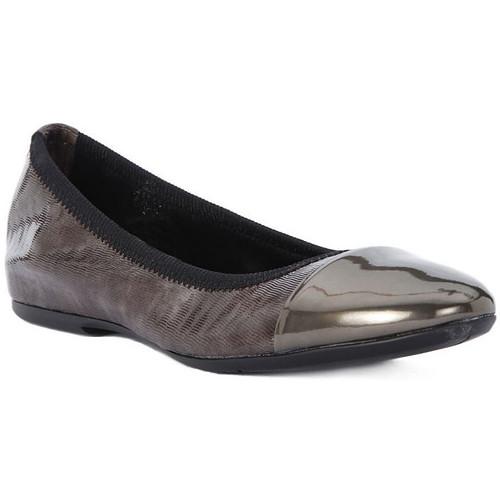 Παπούτσια Γυναίκα Μπαλαρίνες Frau WAVE TAUPE Marrone