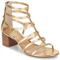Παπούτσια Γυναίκα Σανδάλια / Πέδιλα Ralph Lauren MADGE SANDALS DRESS Gold