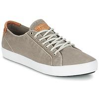 Παπούτσια Άνδρας Χαμηλά Sneakers Blackstone NM95 Grey