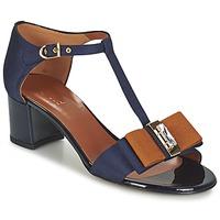 Παπούτσια Γυναίκα Σανδάλια / Πέδιλα Heyraud ENAEL Μπλέ / Brown / Black