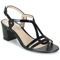 Παπούτσια Γυναίκα Σανδάλια / Πέδιλα Perlato LOABINE Black