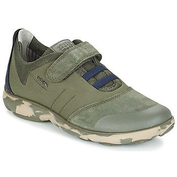 Παπούτσια Παιδί Χαμηλά Sneakers Geox J NEBULA B. A Camo