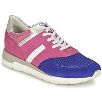 Παπούτσια Γυναίκα Χαμηλά Sneakers Geox SHAHIRA A ροζ / Violet