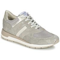 Παπούτσια Γυναίκα Χαμηλά Sneakers Geox SHAHIRA A Grey