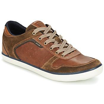 Παπούτσια Άνδρας Χαμηλά Sneakers Geox BOX C Brown