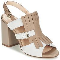 Παπούτσια Γυναίκα Σανδάλια / Πέδιλα Café Noir GONFERT Grey / Beige