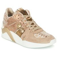 Παπούτσια Γυναίκα Ψηλά Sneakers Serafini CHICAGO Beige / Gold